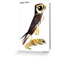 Laggar Falcon caricature Greeting Card