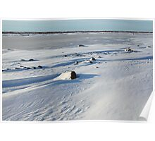 Early Morning on the Tundra, Churchill, Canada Poster