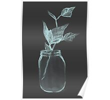 Leaves in a jar watercolor illustration. Poster