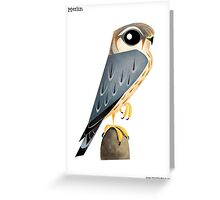 Merlin Falcon caricature Greeting Card