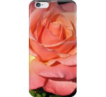 Sunkissed Orange Rose in Semi Profile iPhone Case/Skin