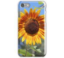 My Neighbor's Sunflower 2 iPhone Case/Skin
