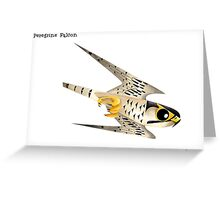 Peregrine Falcon diving caricature Greeting Card