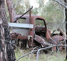 Rusty Truck in the Trees by Stuart Daddow Photography