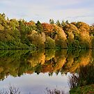 Dundas Loch & boathouse by Doug Cook