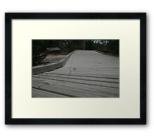 Just a bug on the walkway of life Framed Print