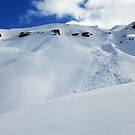 Backcountry slope II by geophotographic