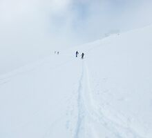 Backcountry tracks II by geophotographic