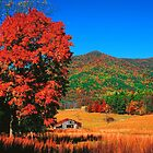 AUTUMN,CADES COVE by Chuck Wickham