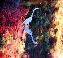 Heron in Wilderness by loiteke