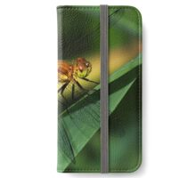 Golden iPhone Wallet/Case/Skin