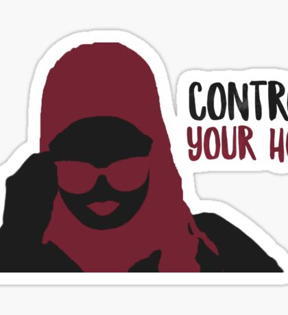 Control Your Hoes Sticker