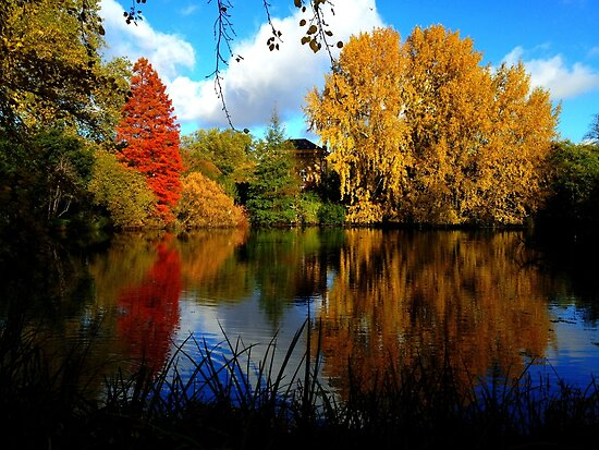 Autumn in Battersea Park by Ludwig Wagner