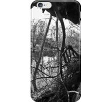 Breeze Through the Treehole iPhone Case/Skin