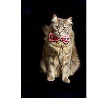 Bow-Tie Boy Photographic Print