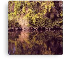 Magical river reflections Canvas Print