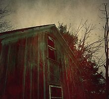 The Bleeding House by Trish Mistric