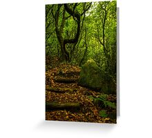 Wild Forest - Nature Photography Greeting Card