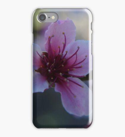 Blossom - Macro iPhone Case/Skin