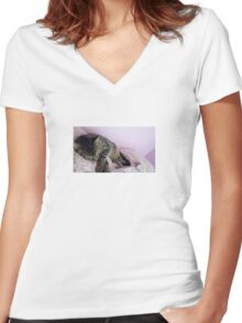 Sleeping Cute Kitty, Cat Women's Fitted V-Neck T-Shirt
