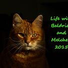 Life with Baldrick and Melchett 2015 by turniptowers