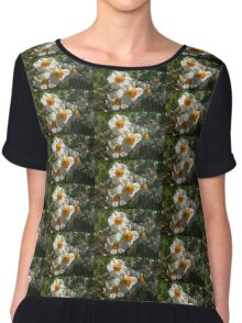Sunny Side Up - Daffodils Blooming in a Fabulous Spring Garden Chiffon Top