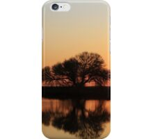 It's all about the light... Sunrise... Along the rural road, Free State, South Africa iPhone Case/Skin