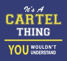 It's A CARTEL thing, you wouldn't understand !! by satro