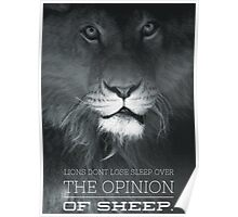 Lions VS Opinion Of Sheep Poster