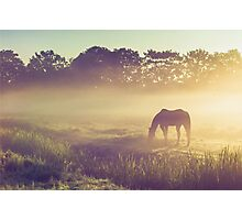 Misty Morning on the Dutch Field Photographic Print