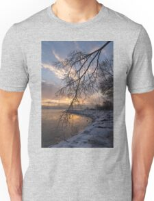 Beautiful Aftermath of an Ice Storm - Sunrise Through Frozen Branches Unisex T-Shirt