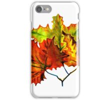 Earth Autumn Leaves iPhone Case/Skin