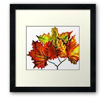 Earth Autumn Leaves Framed Print