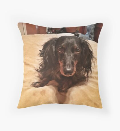 Chili Dog Throw Pillow