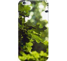 Forest oak iPhone Case/Skin