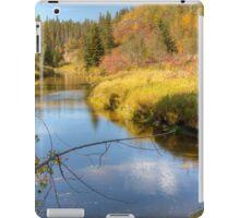 Autumn Splendor iPad Case/Skin