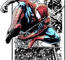 Amazing Spider by WCPerryAndrez