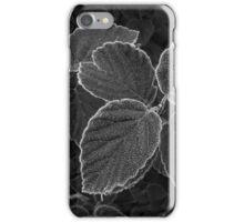 Freezing Fog iPhone Case/Skin