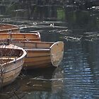 Row Boats by Richard Murias