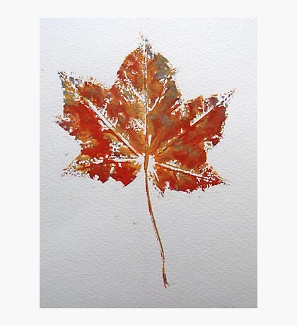 Maple Leaf Print 1 Photographic Print