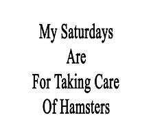 My Saturdays Are For Taking Care Of Hamsters  Photographic Print
