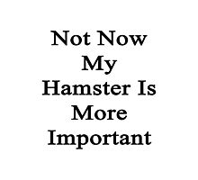 Not Now My Hamster Is More Important  Photographic Print