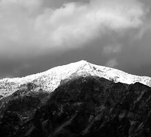 Snow Capped Peak (Ben Lomond Peak)  by Jan  Tribe