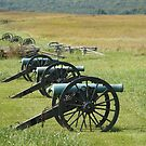 Cannons @ Rest by joelmcafee