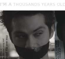 Void Stiles (with quotes) Sticker