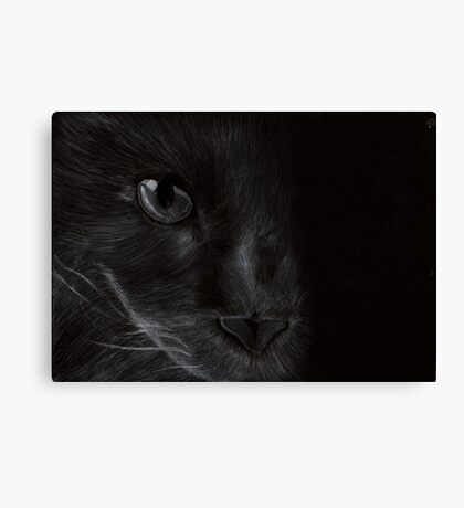 Cat in the Light Canvas Print