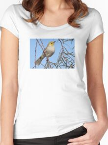 White-plumed Honeyeater Women's Fitted Scoop T-Shirt