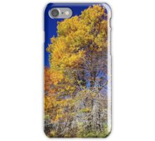 Autumn on the Blue Ridge Parkway iPhone Case/Skin