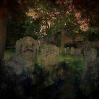 Graveyard in Kings Lynn by Astrid de Cock
