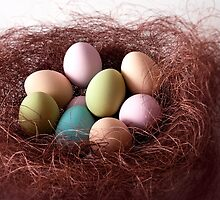 Easter Painted Eggs by Andrew Bret Wallis